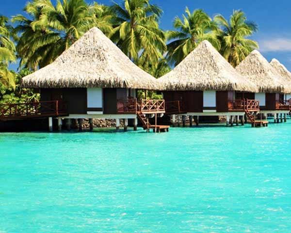 oscm maldives